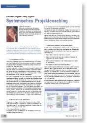 Systemisches Projektcoaching